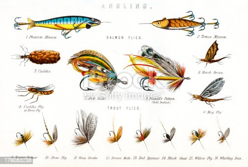 Vintage engraving of various Fishing Flies, including - Salmon flies, Phantom Minnow, Totnes Minnow, Caddis, March Brown, Jock scott, Pennell's Pattern, Caddis Fly, May fly, Trout flies, Brown palmer, Stone fly, Grey drake, Brown, Red spinner, Black gnat, Willow fly, Whirling dun.