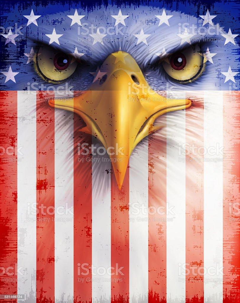 USA flag with bald eagle vector art illustration