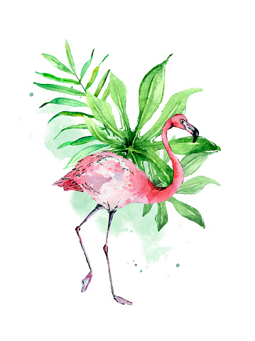 Flamingo on watercolor tropic leaves and strains design