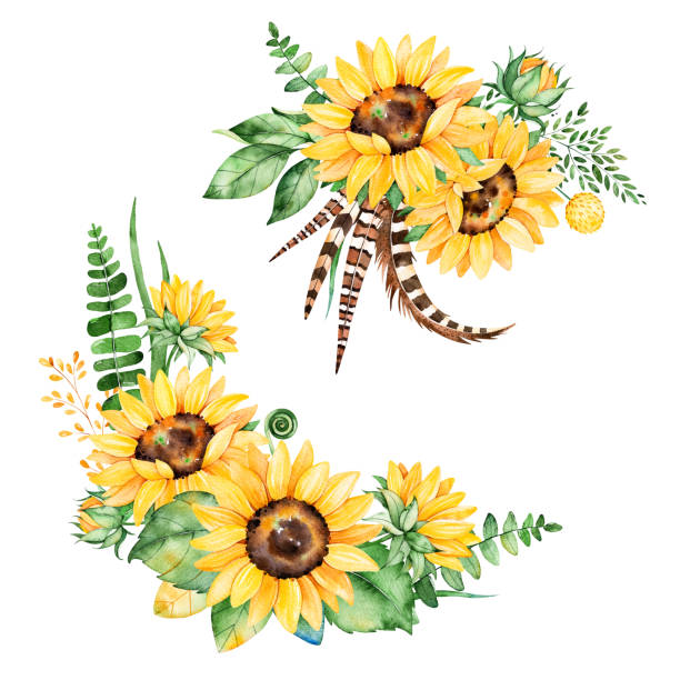 Best Sunflower Bouquet Illustrations, Royalty-Free Vector ...