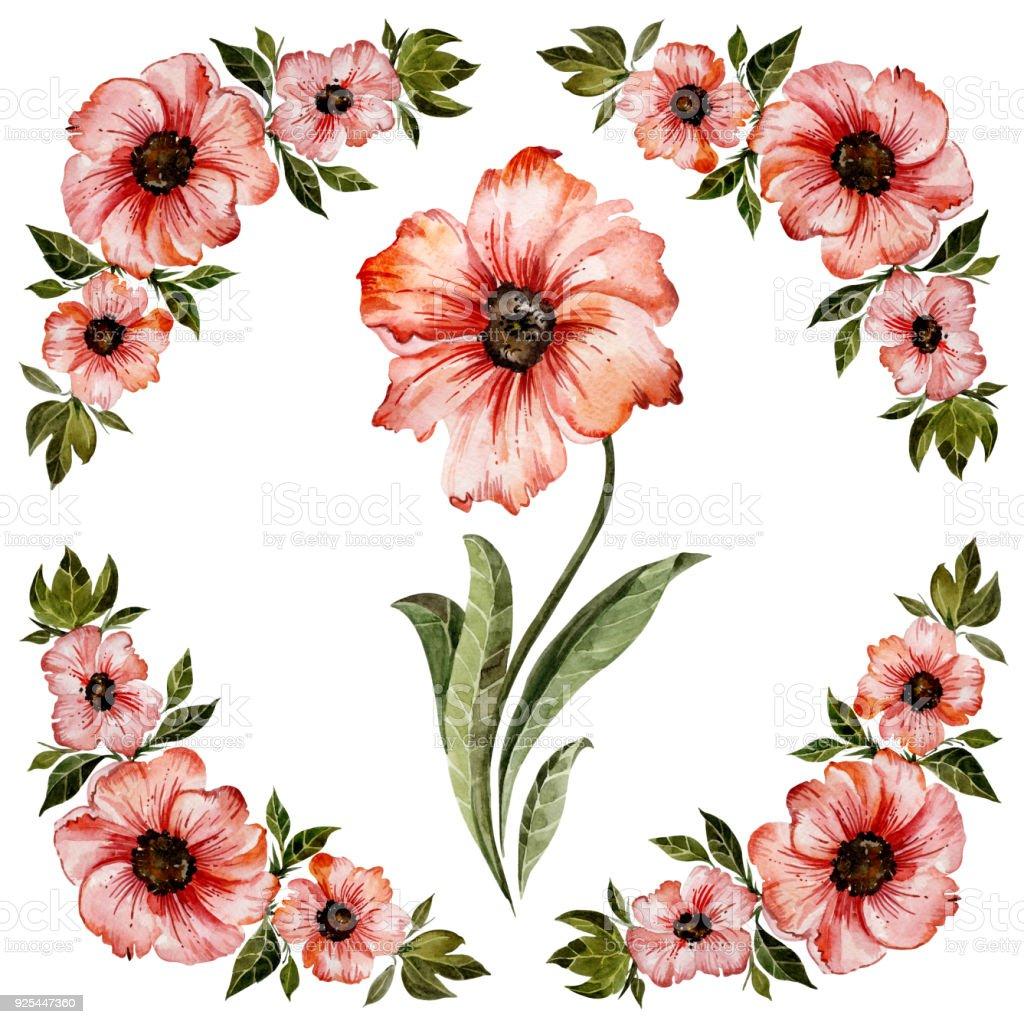 Blumenrahmen Abbildung Schöne Rote Blüten Mit Grünen Blättern Runde ...