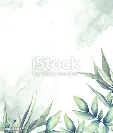 Hand drawn watercolor illustration, Botanical wreath of green branches and leaves, Floral Design elements, Watercolor painting on white background.