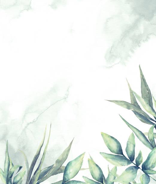 수채화 열대 잎꽃 프레임 - 수채화 물감 stock illustrations