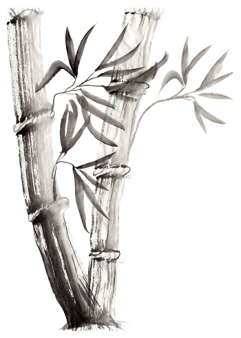 Floral illustration in Japanese folk painting style Sumi-e. Monochrome  hand drawn fantasy stalks and leaves of bamboo isolated on a white background. Batik, book cover, tee shirt print, greeting, invitation card
