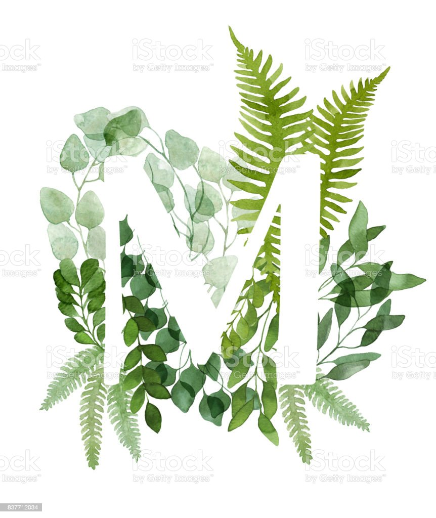 Floral Letter M Beautiful Green Leaves And Branches Painted With