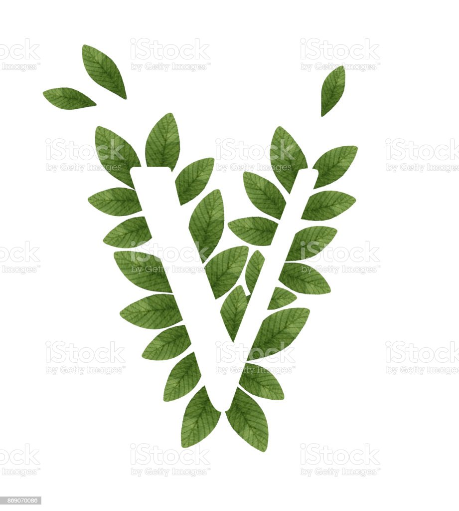 Floral letter v in green leaves stock vector art more images of floral letter v in green leaves royalty free floral letter v in green leaves stock altavistaventures Images