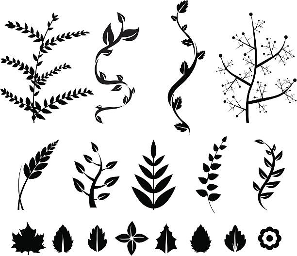 floral pattern - vine stock illustrations, clip art, cartoons, & icons