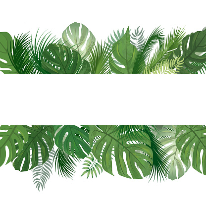 Floral Pattern Tropical Palm Tree Leaves Background Stock Illustration Download Image Now Istock