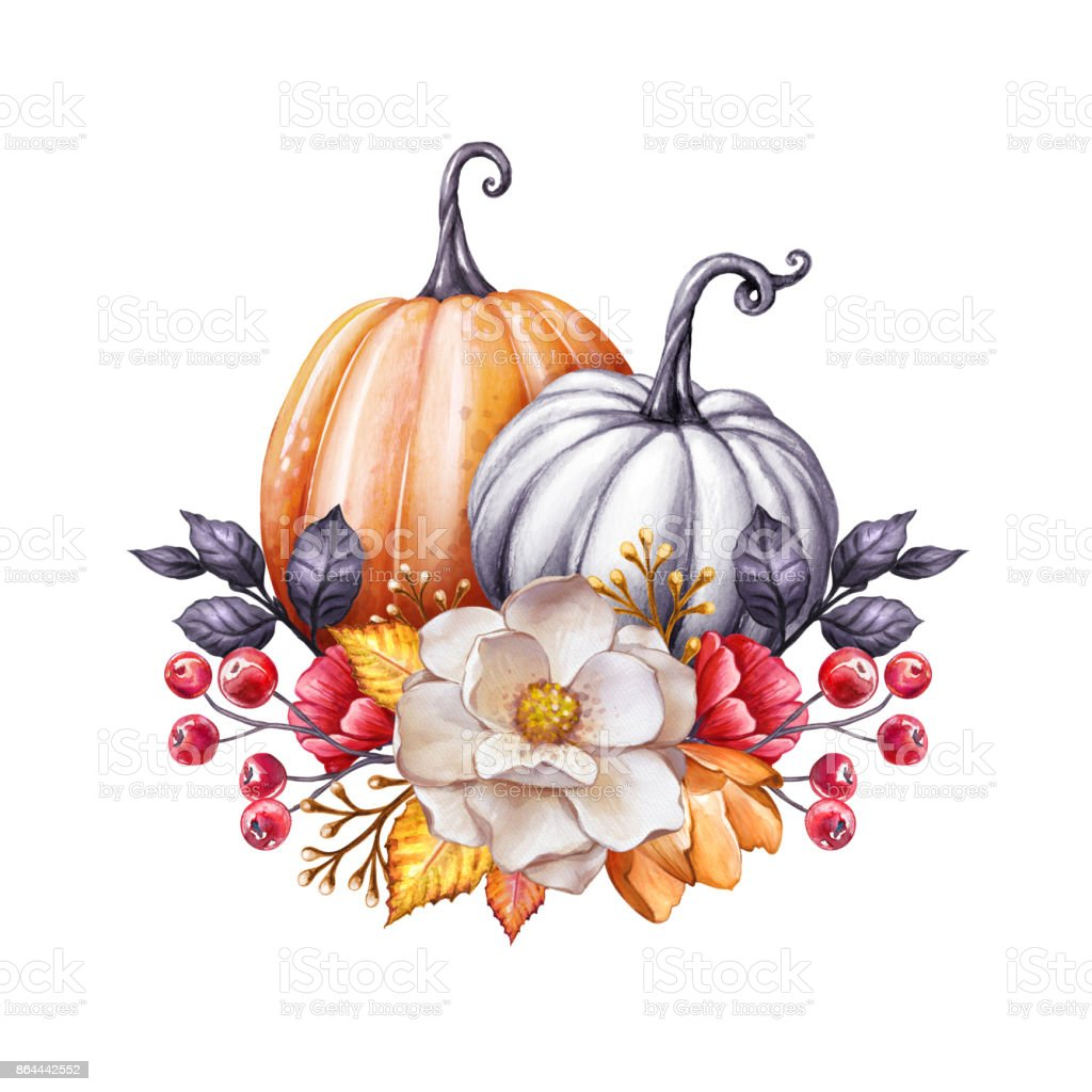 Floral Pumpkins Thanksgiving Watercolor Illustration Autumn