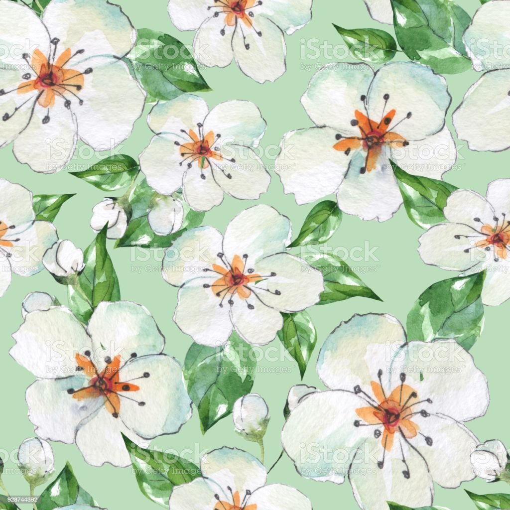 Floral Seamless Pattern 4 Blooming Apple Tree Watercolor Background