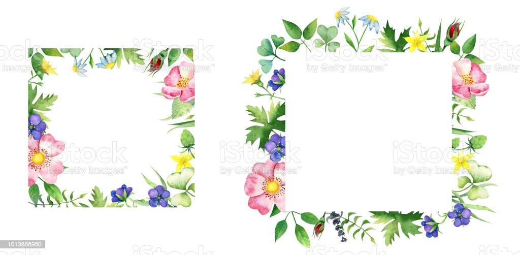 Ilustración de Marcos Cuadrados Floralesrosa Flores Silvestres Y ...