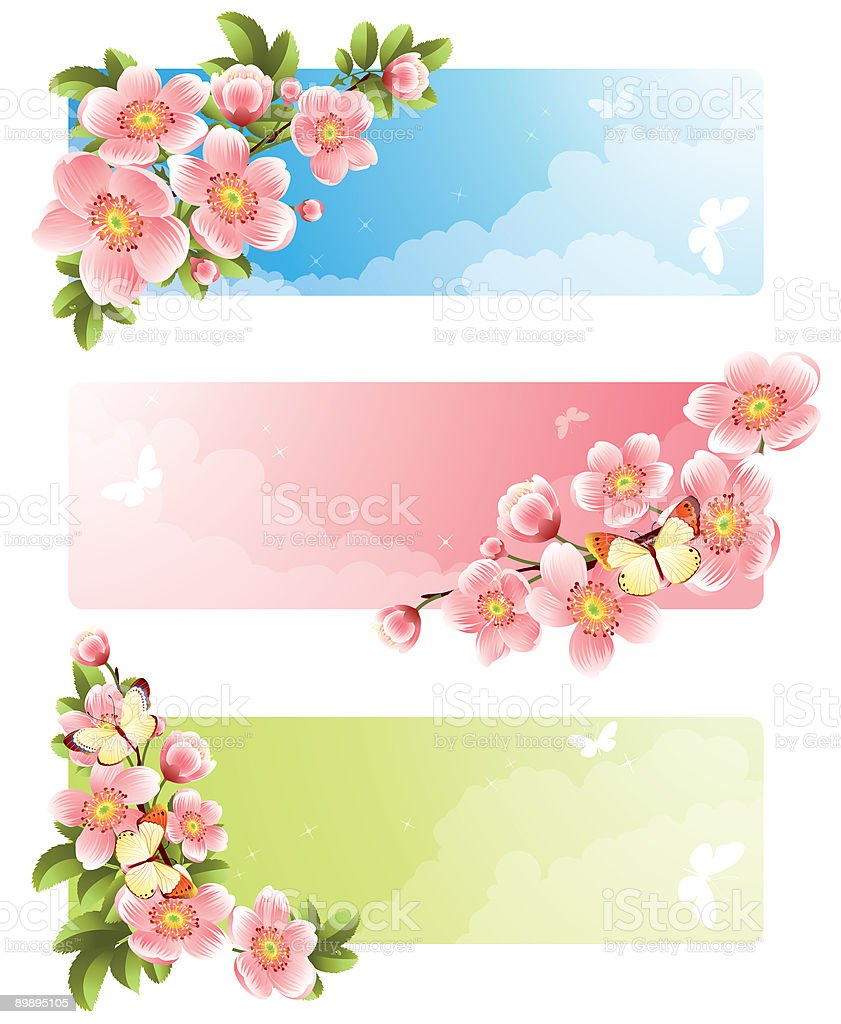 Flower banner royalty-free flower banner stock vector art & more images of backgrounds