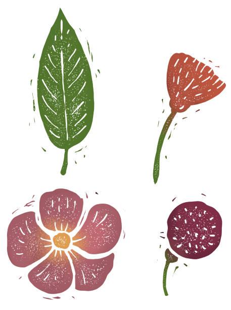 Flower, leaf linocut illustration, isolated on white with clipping path linocut illustration, isolated on white with clipping path linocut stock illustrations