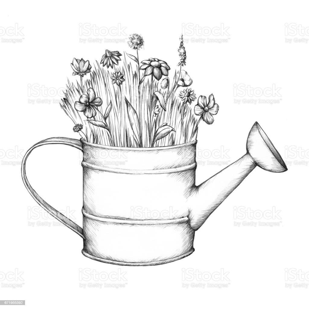 Blumenwiese in einer Gießkanne – Vektorgrafik