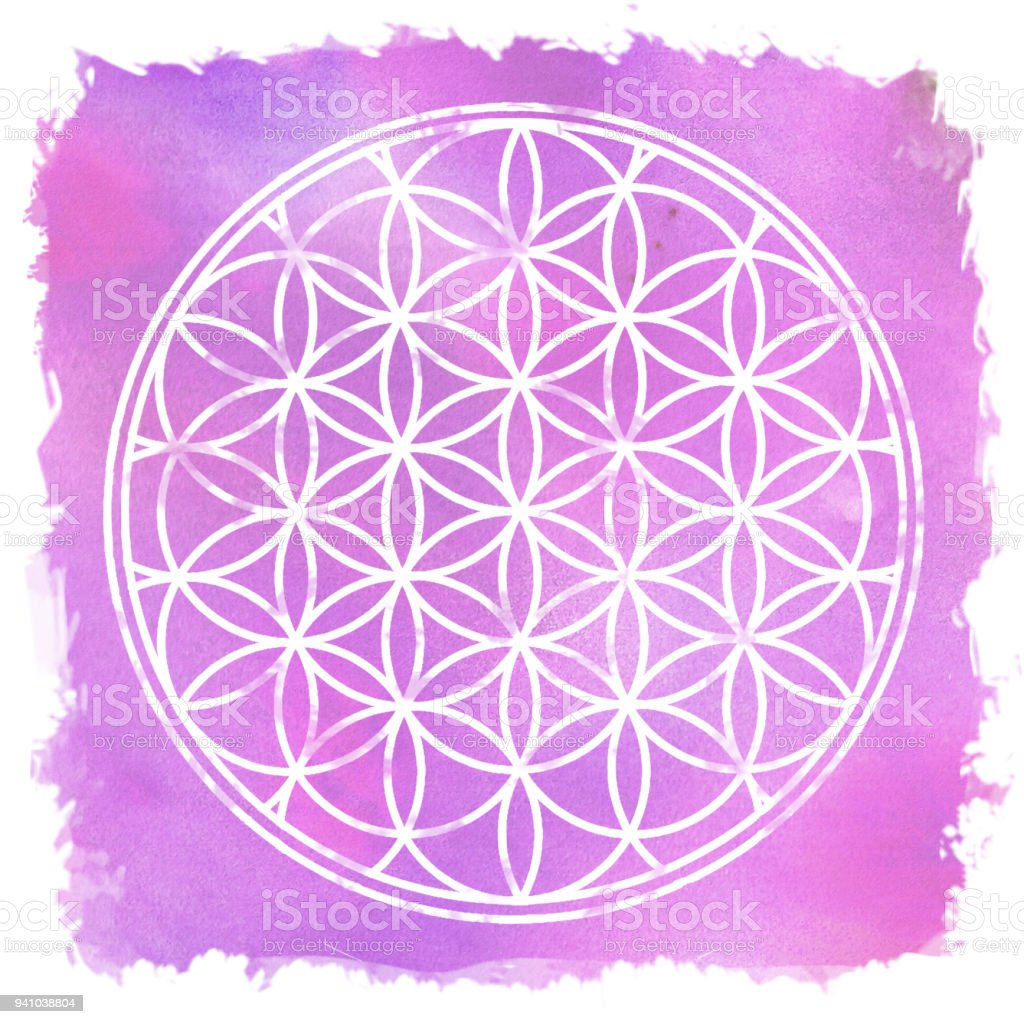 Flower Of Life Sacred Geometry Lotus Flower Stock Vector Art More