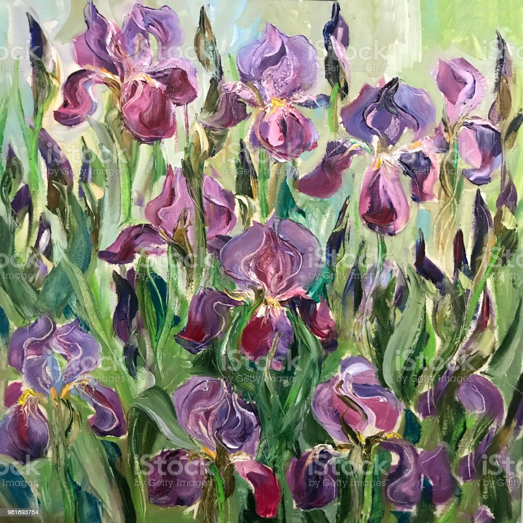 Drawing of blossom irises on a flower bed. Buds blossomed on tiny...