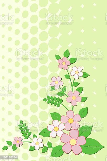 Flowers illustration id164163144?b=1&k=6&m=164163144&s=612x612&h=qwgzcscvcanbkhvwp4gjpw 6wuhn 8f48lebjqssl u=