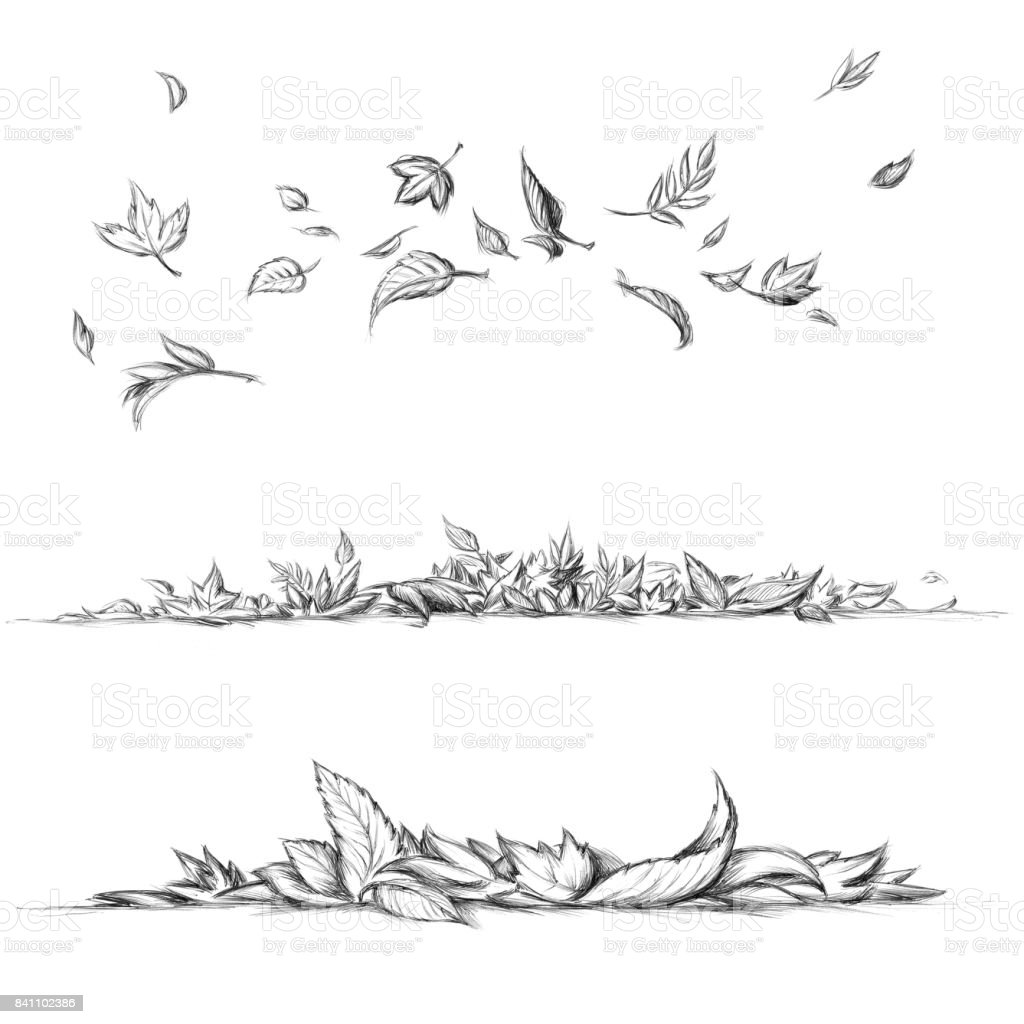 Fliegen und Blätter liegen – Vektorgrafik