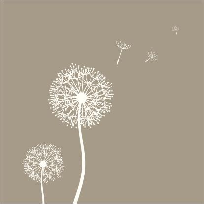 Flying Dandelion Seeds Stock Illustration - Download Image Now