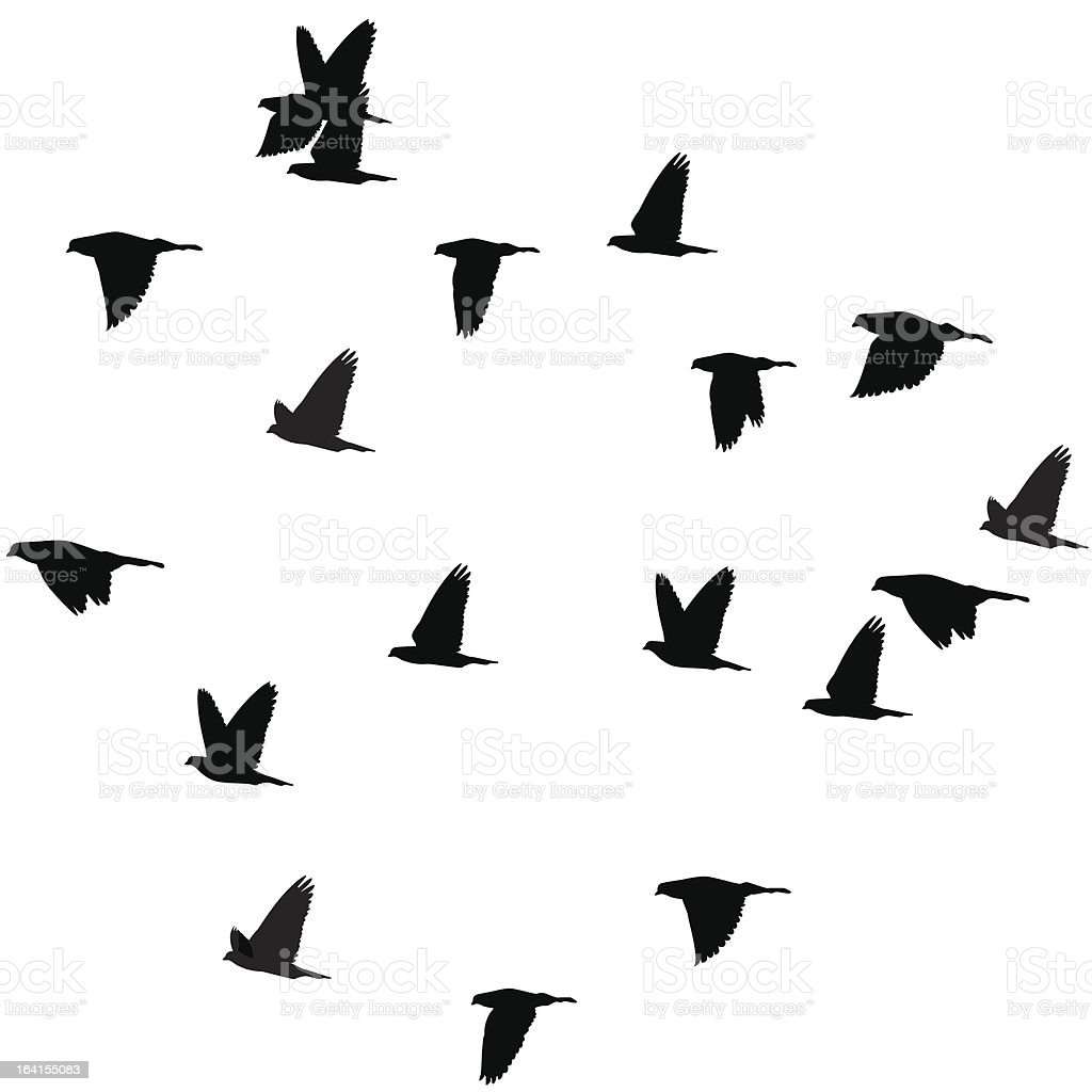 For whom the doves fly royalty-free stock vector art