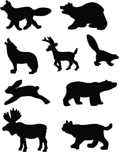 Forest Animal Silhouettes vector art illustration