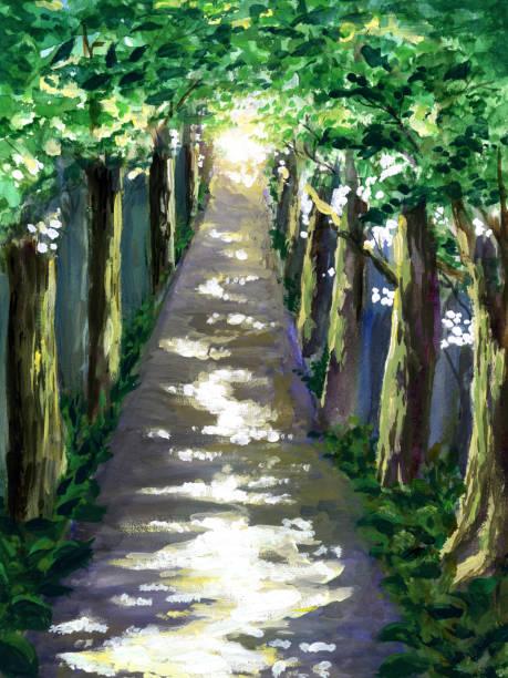 illustrazioni stock, clip art, cartoni animati e icone di tendenza di forest road - forest bathing