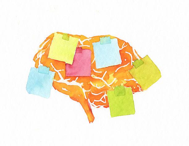 ilustrações de stock, clip art, desenhos animados e ícones de esquecida cérebro - alzheimer