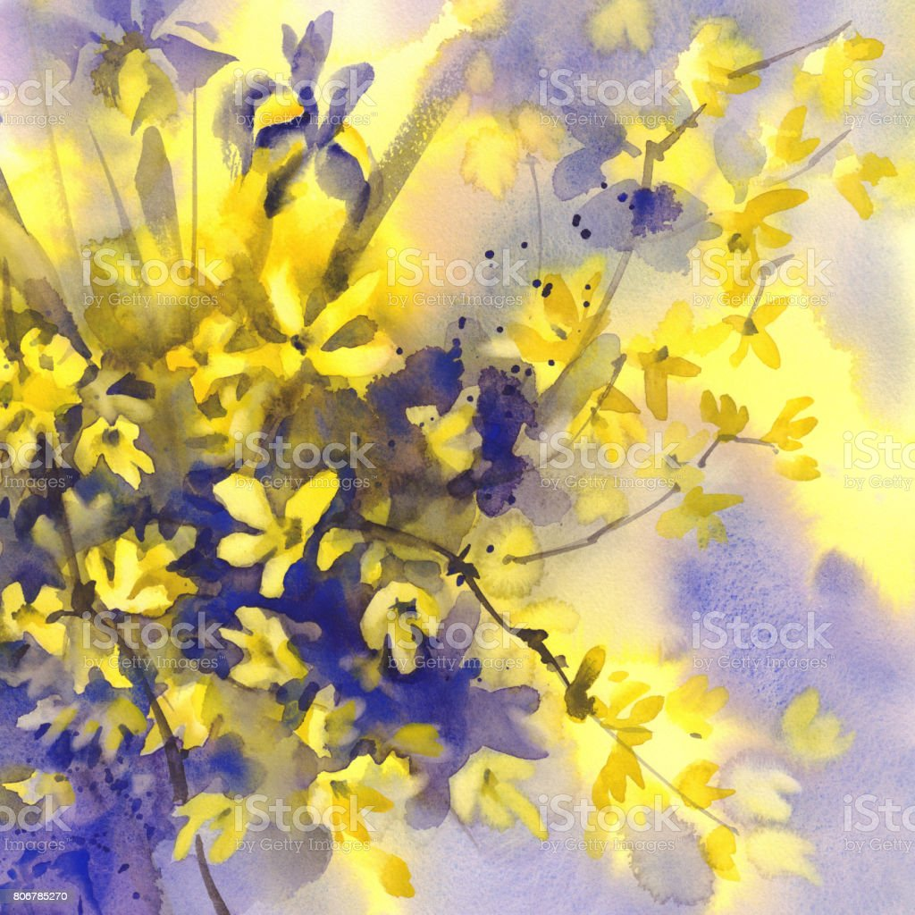 Forsythia and iris flowers watercolor background stock vector art forsythia and iris flowers watercolor background royalty free forsythia and iris flowers watercolor background stock izmirmasajfo