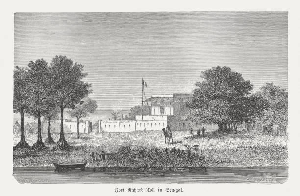 fort richard toll in senegal, wood engraving, published in 1868 - st louis stock illustrations