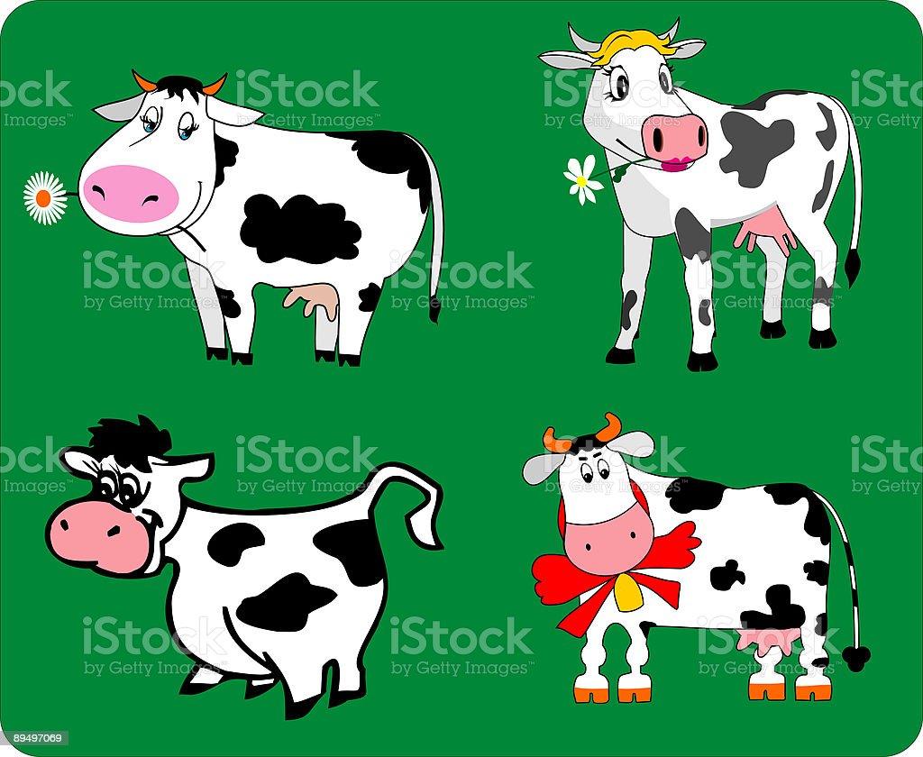 Quattro mucche quattro mucche - immagini vettoriali stock e altre immagini di animale royalty-free