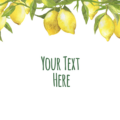 Frame Border With Fruit Lemons On A Branch With Green Leaves Stock Illustration Download Image