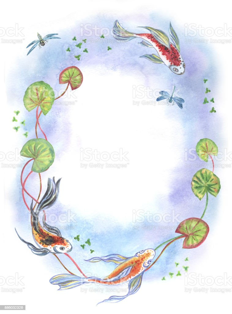 Frame from Koi fish, plants and dragonflies vector art illustration