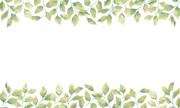 Frame with watercolor green leaves, single elements on a white background. vector art illustration