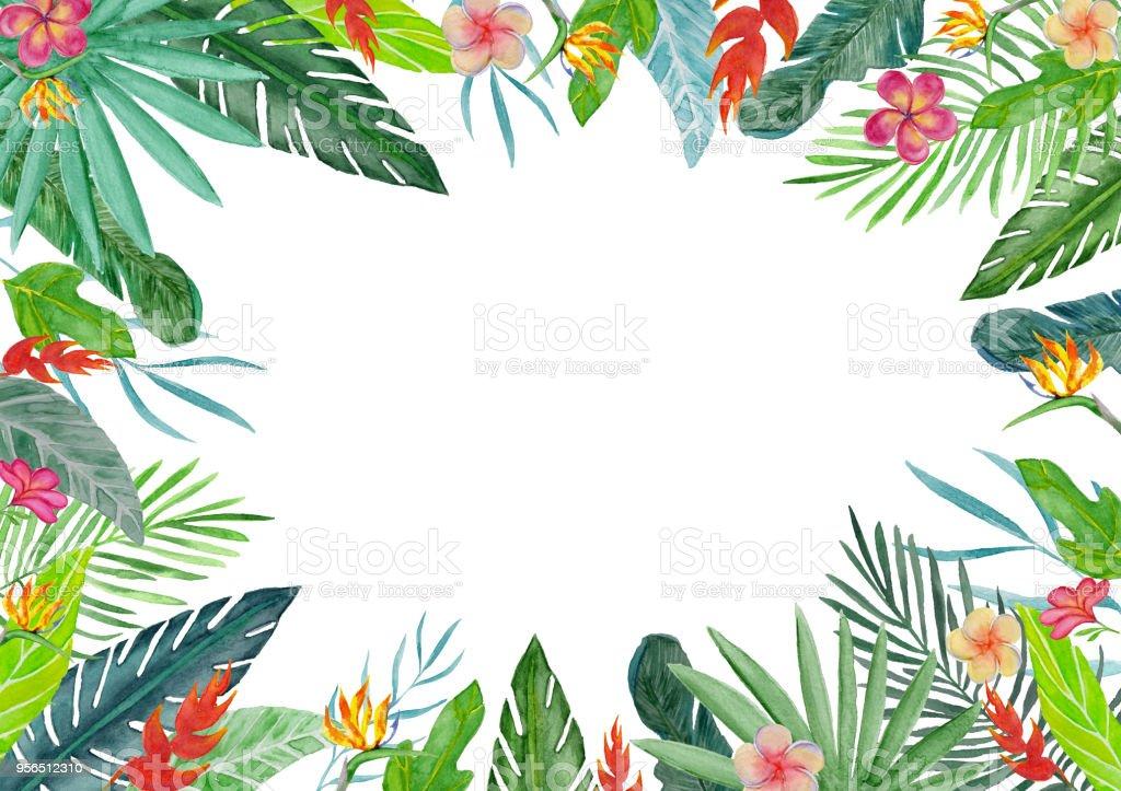 Ilustración de Marco Con Acuarela Plantas Y Flores Tropicales y más ...
