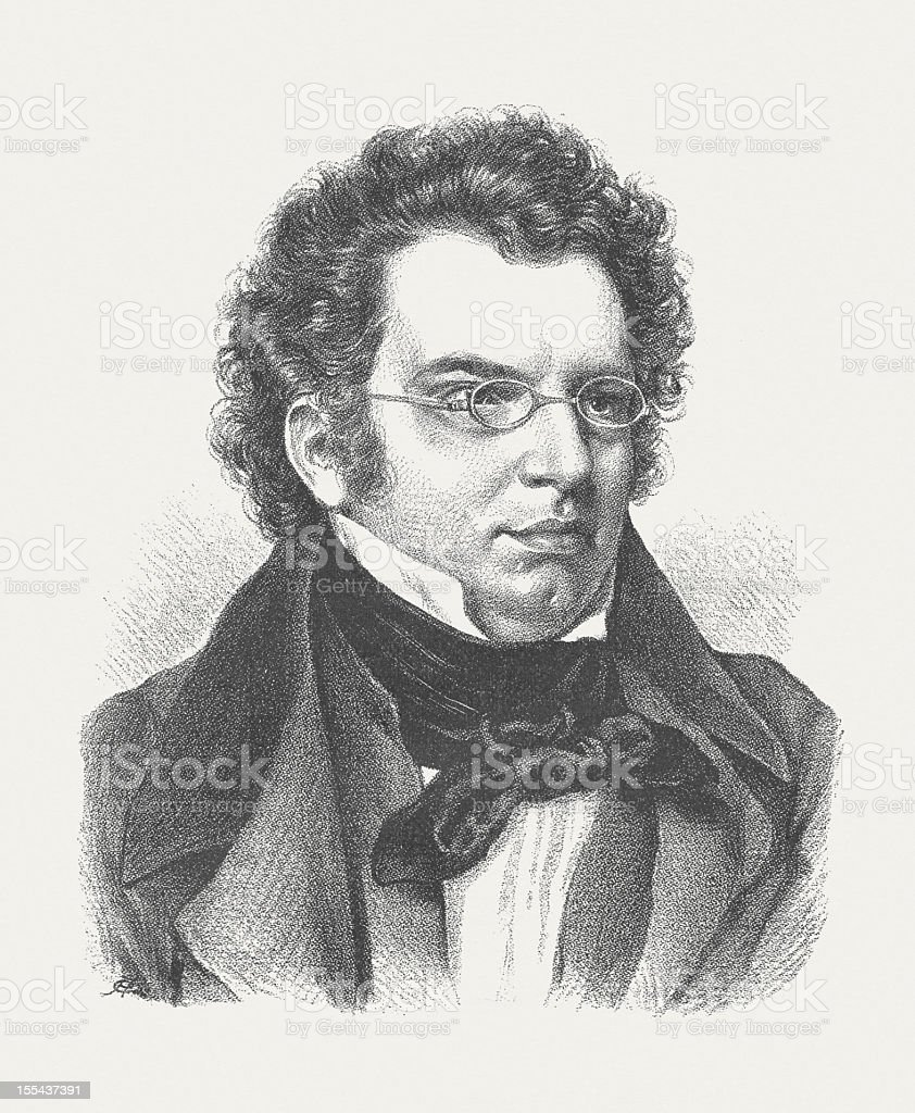 "an introduction to the impact of franz schubert The song ""the death and the maiden"" d song are just an introduction to the second movement of the string quartet d 810 by franz schubert."
