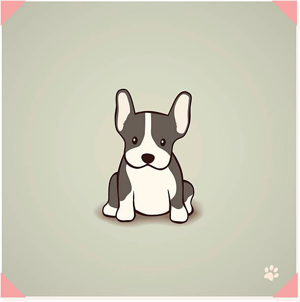 französische bulldogge welpen - schoßhunde stock-grafiken, -clipart, -cartoons und -symbole
