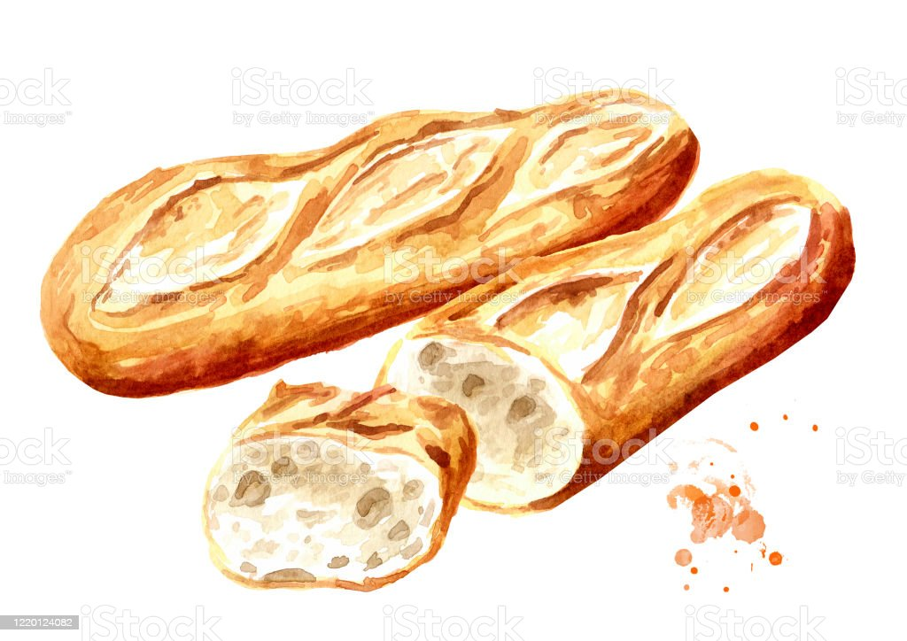 Fresh Baguette Whole And Cut In Half French Bread Hand Drawn Watercolor Illustration Isolated On White Background Stock Illustration Download Image Now Istock