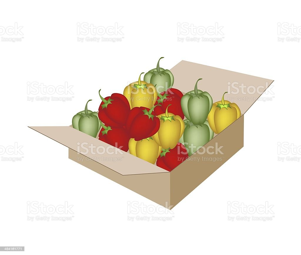 Fresh Bell Peppers in A Shipping Box royalty-free stock vector art
