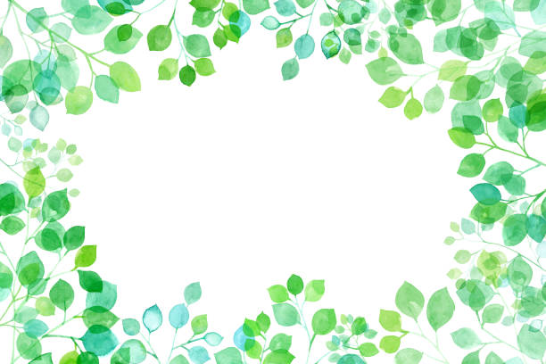 illustrazioni stock, clip art, cartoni animati e icone di tendenza di fresh green looking up, watercolor illustration of branches and leaves shining through the sun, frame background - forest bathing