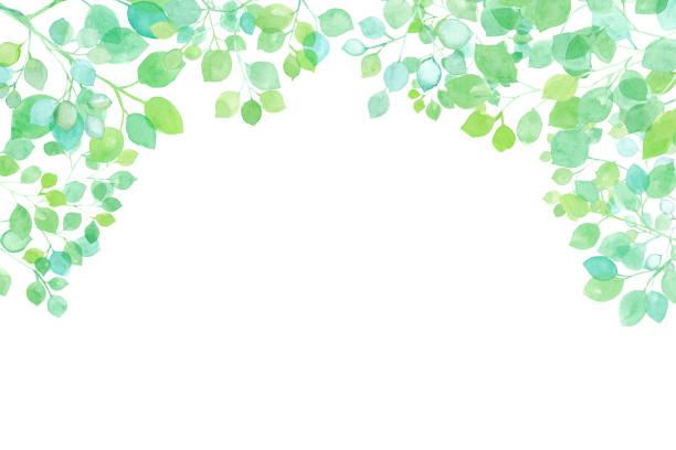 illustrazioni stock, clip art, cartoni animati e icone di tendenza di fresh green sunbeams frame watercolor illustration - forest bathing