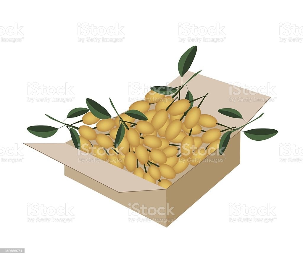 Fresh Juicy Burmese Grape in A Shipping Box royalty-free stock vector art