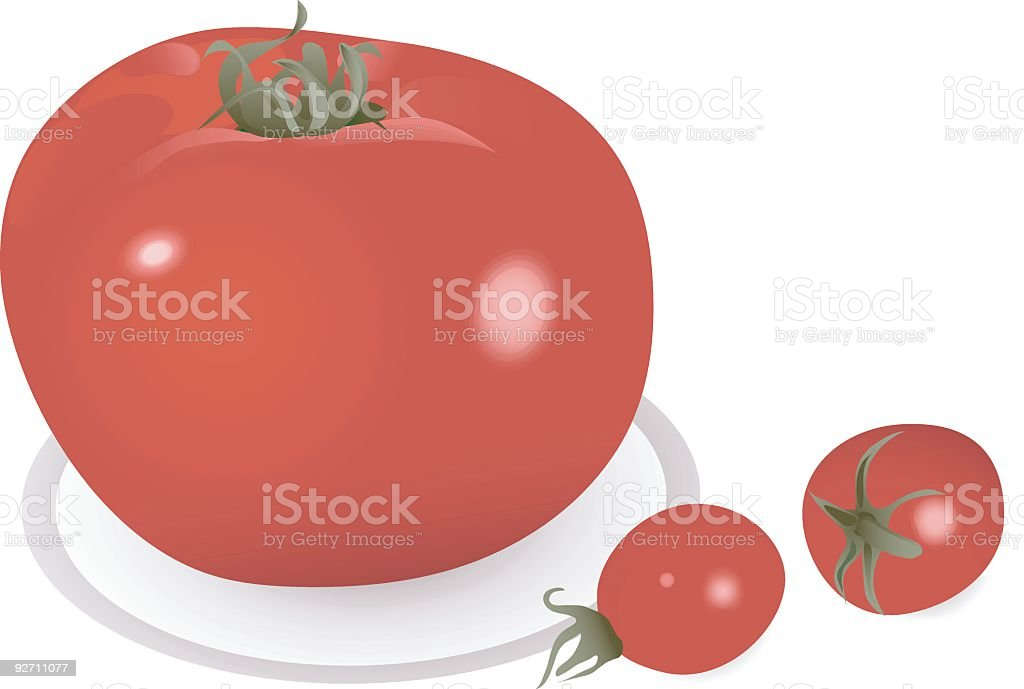 Fresh red tomato royalty-free stock vector art