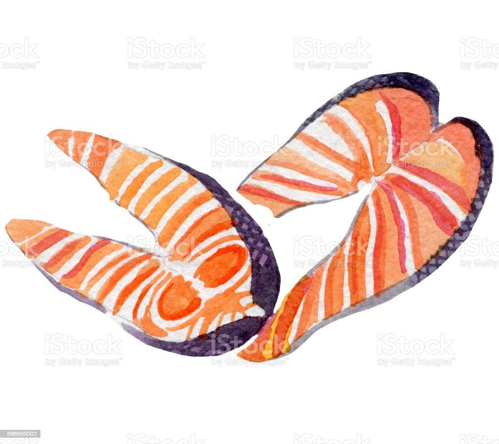 fresh salmon illustration. Hand drawn watercolor on white background. vector art illustration