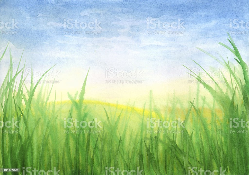 Fresh Spring Grass royalty-free fresh spring grass stock vector art & more images of agriculture