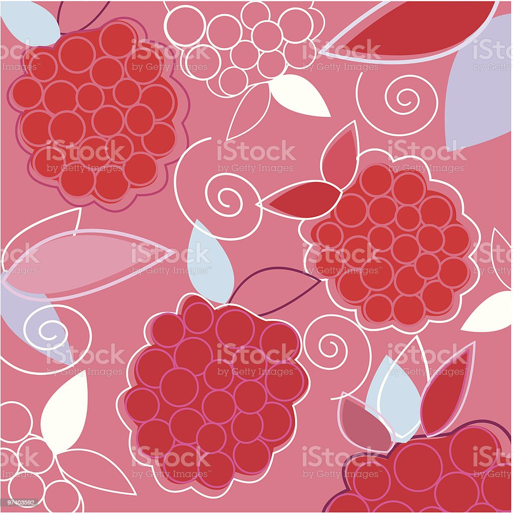Fresh Taste of Summer Raspberry vector art illustration