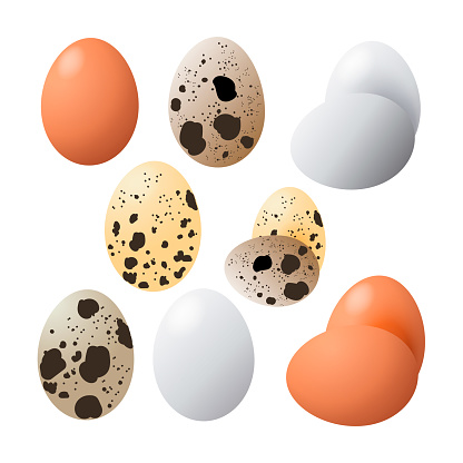 Fried egg set. Fast food. Cooking lunch, dinner or breakfast. Natural product. Cooked omelet.
