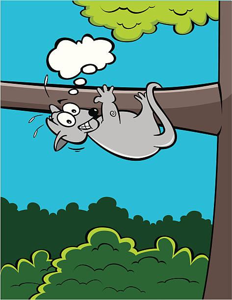Harry Possum der Ravenclaw Opossum Magnet   Etsy