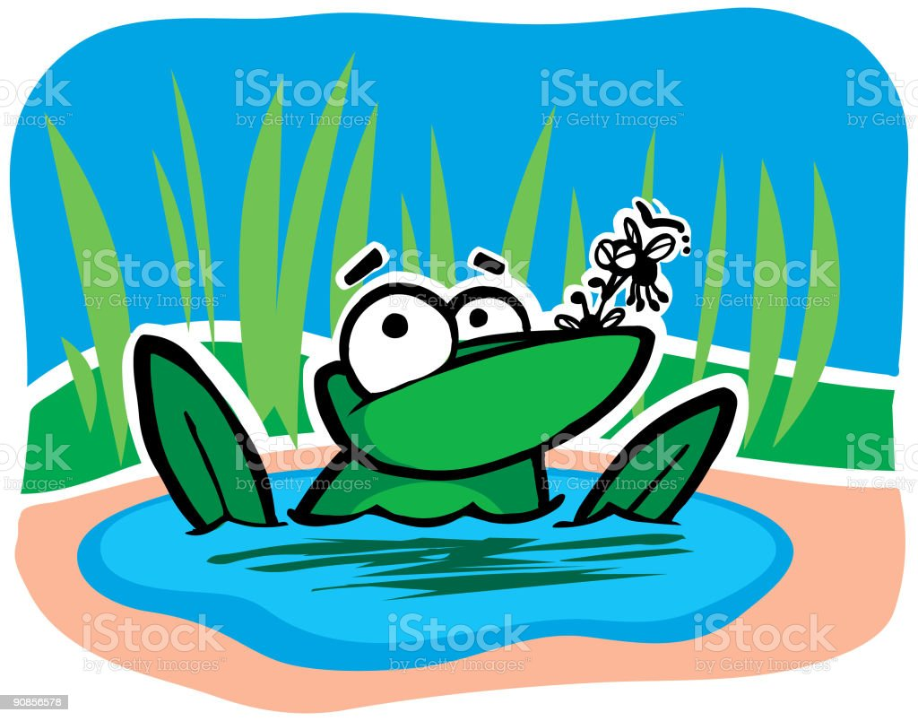 Frog and Flies vector art illustration