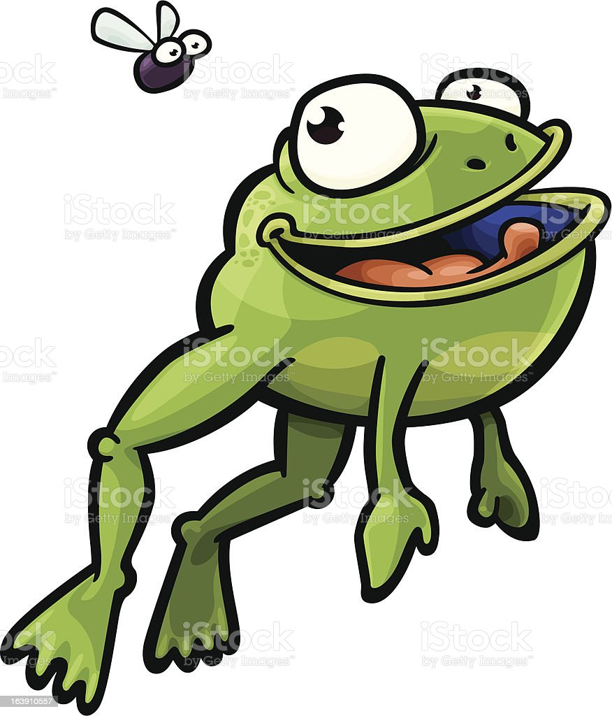 Frog and Fly vector art illustration