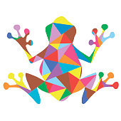 Frog polygonal